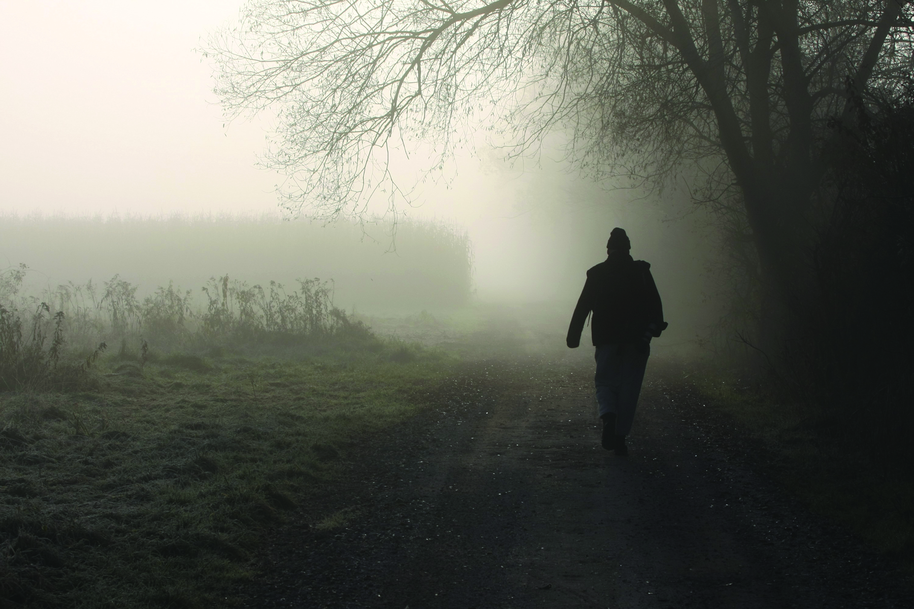 Silhouette of Person Walking Down Dirt Road in Fog